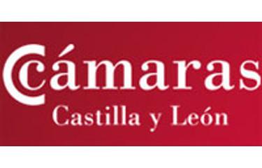 Consejo Regional de Cámaras Oficiales de Comercio e Industria de Castilla y León