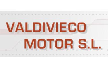 Valdivieco Motor